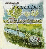 le Barbarighe