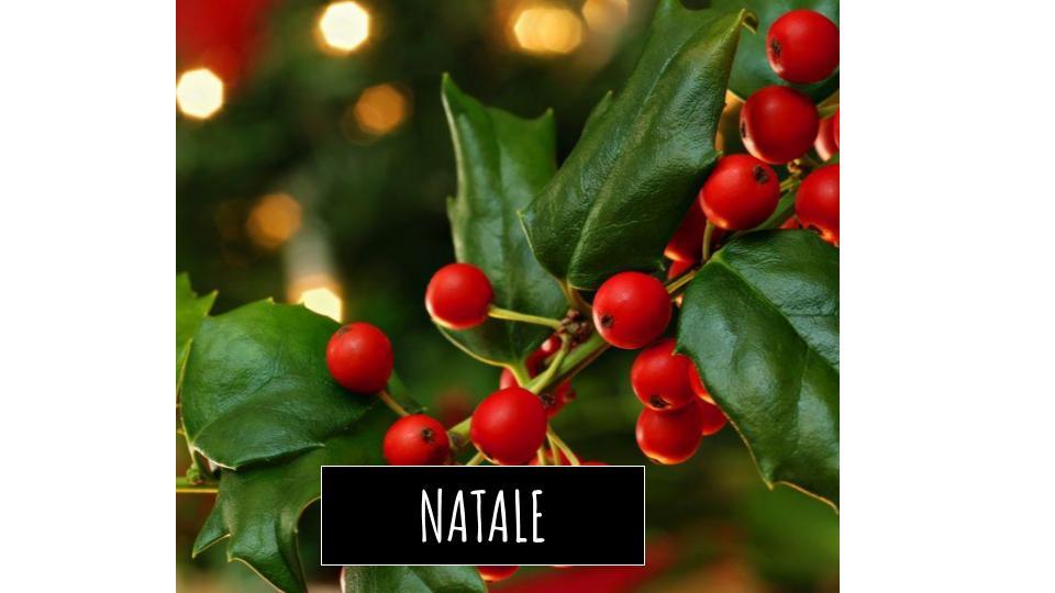 Prodotti Natale Solidale